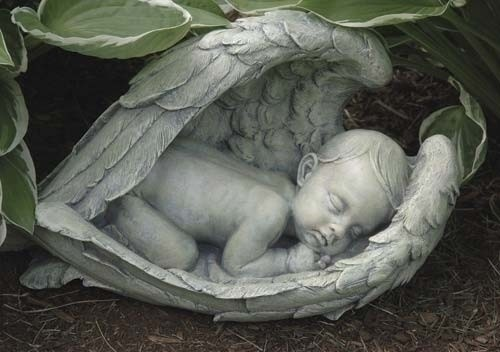 SLEEPING BABY IN WINGS